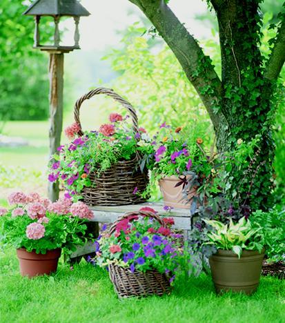 Для создания красоты уютный сад и