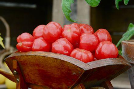 название сортов помидор