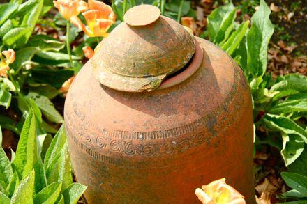 Примеры оформления сада