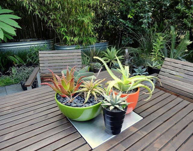 В горшках — декор для сада своими
