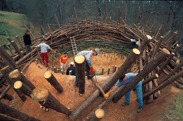 Необычные постройки.Гнездо своими руками.