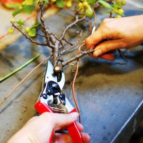 Как делать букеты - как сделать букет из цветов (7)