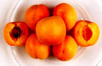 Посадка абрикоса - уход за деревом (3)