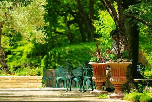 Дизайн садового участка - приусадебный участок своими руками (4)