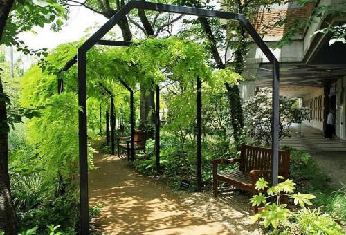 Дизайн садового участка - приусадебный участок своими руками (6)
