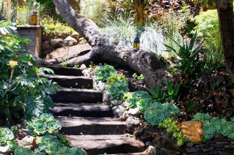 Идеи для сада - вертикальные планировки участка (4)