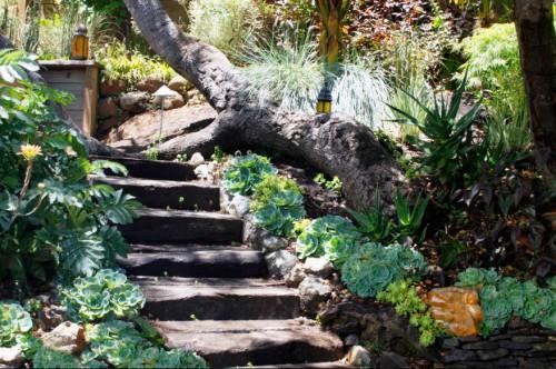 Идеи для сада - вертикальные планировки участка (15)