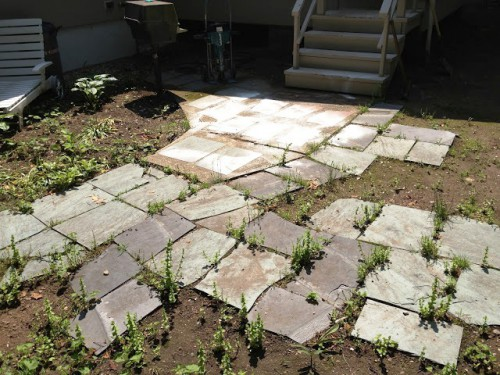 Красивый вход в дом - красивый сад своими руками (2)