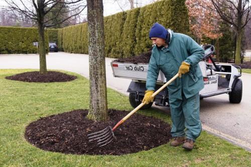 Мульчирование почвы - что такое мульча (7)