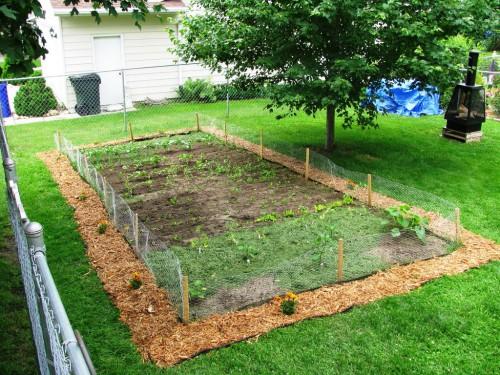 Украшение огорода своими руками