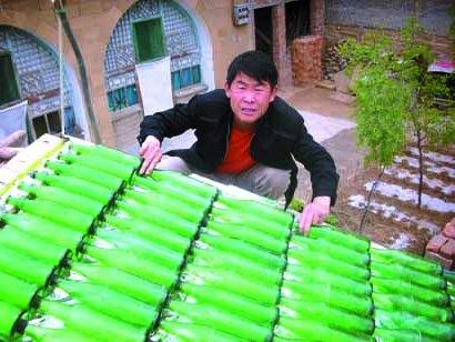 Самоделки из пластиковых бутылок - поделки из пластиковых бутылок для детей (4)