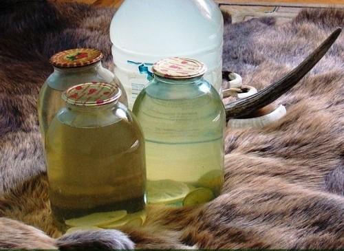 Сбор березового сока - сок березы (50)