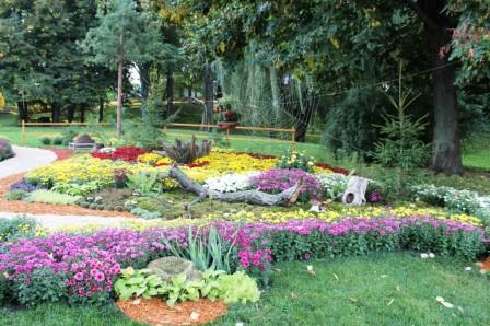 Создание цветников - цветник своими руками (5)