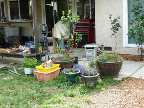 Украшение садового участка своими руками - оформление дачи своими руками (3)