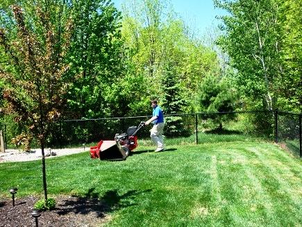 Уход за газоном - стрижка газона (5)