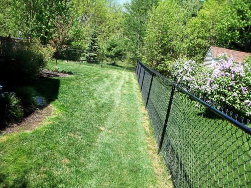 Уход за газоном - стрижка газона (13)