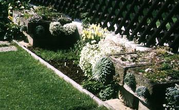 Альпинарий фото - растения для альпинария (27)