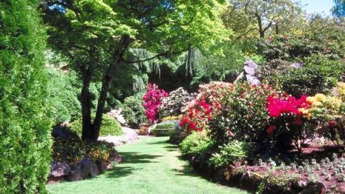 Палисадник своими руками - фото как украсить сад  (16)