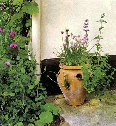 Палисадник своими руками - фото как украсить сад  (23)