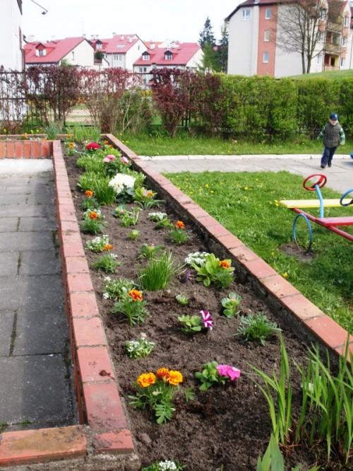 Рабатка - фото цветников (20)