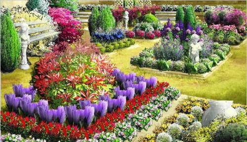 Рабатка - фото цветников (21)