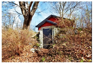 Обустройство погреба - погреб на даче (4)