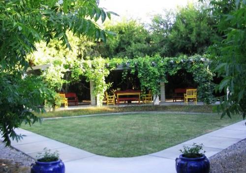 Вертикальное озеленение сада - озеленение территории (7)