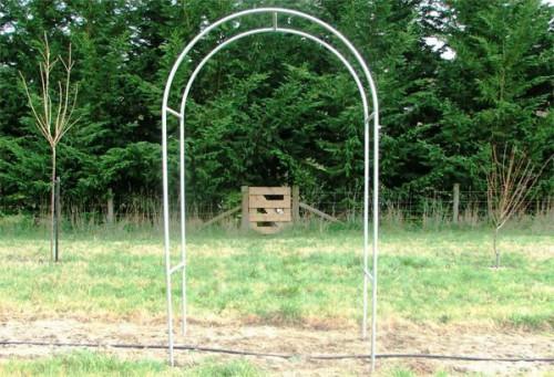 Вертикальное озеленение сада - озеленение территории (12)