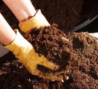 Органические удобрения - хранение навоза (2)