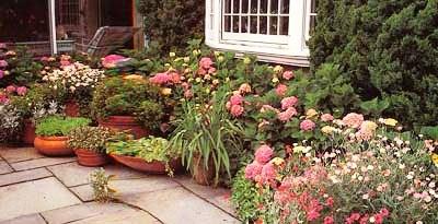 Палисадник своими руками - фото как украсить сад  (4)