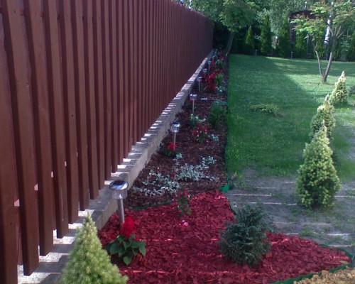 Рабатка - фото цветников (1)