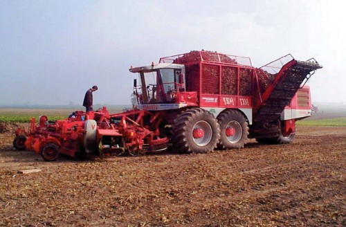Состав почвы - определение PH почвы (6)