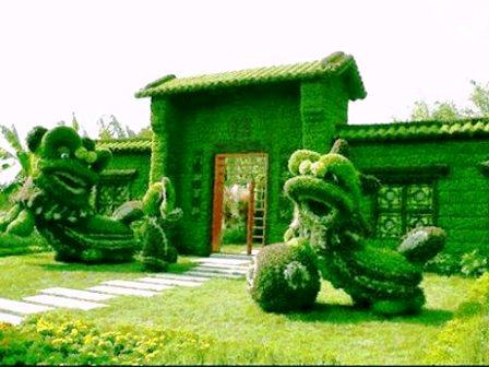 Топиарное искусство - виды растений и фото (36)