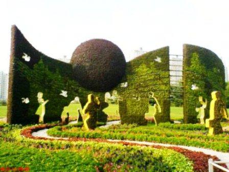 Топиарное искусство - виды растений и фото (42)