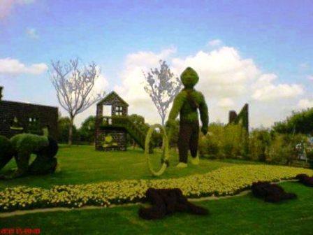 Топиарное искусство - виды растений и фото (45)