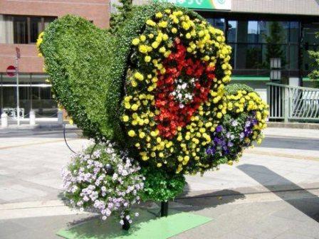 Топиарное искусство - виды растений и фото (47)