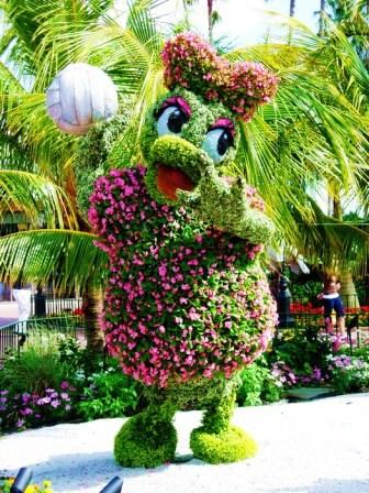 Топиарное искусство - виды растений и фото (66)