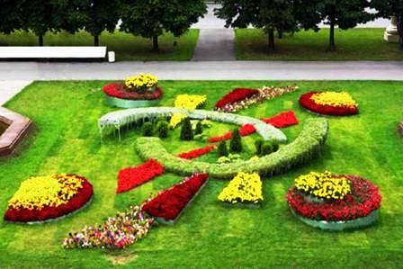 Топиарное искусство - виды растений и фото (68)