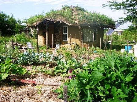 Дома из самана - эльфийские и хоббичьи постройки - фото (21)