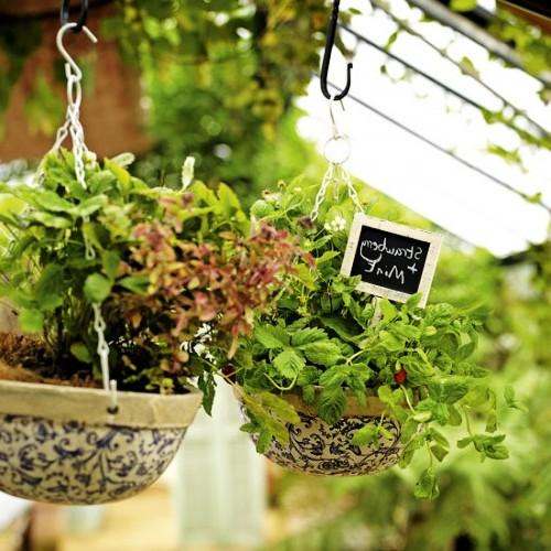 Оформление садов - винтажный стиль (21)