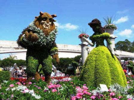 Топиарное искусство - виды растений и фото (7)