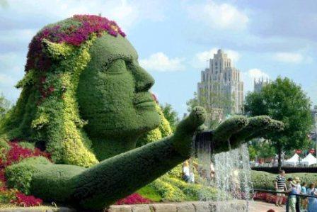 Топиарное искусство - виды растений и фото (20)