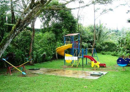 Сад для взрослых и детей (3)
