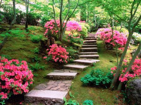 Сад любви (1)