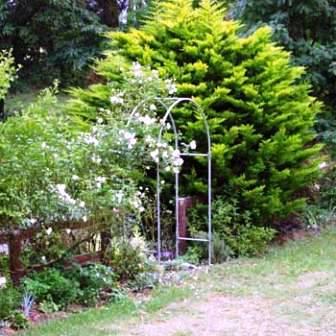 Сад любви (5)