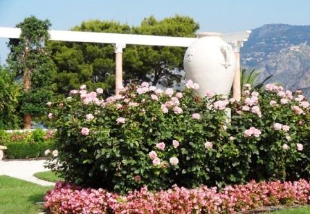 Сад любви (11)