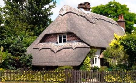 Крыши из соломы (11)