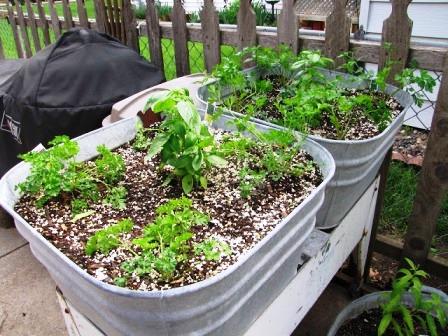 Интересные идеи для сада своими руками (1)