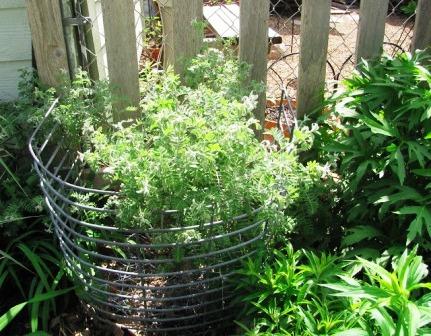 Интересные идеи для сада своими руками (5)