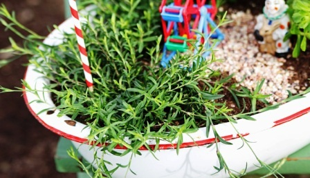Как украсить свой двор (5)